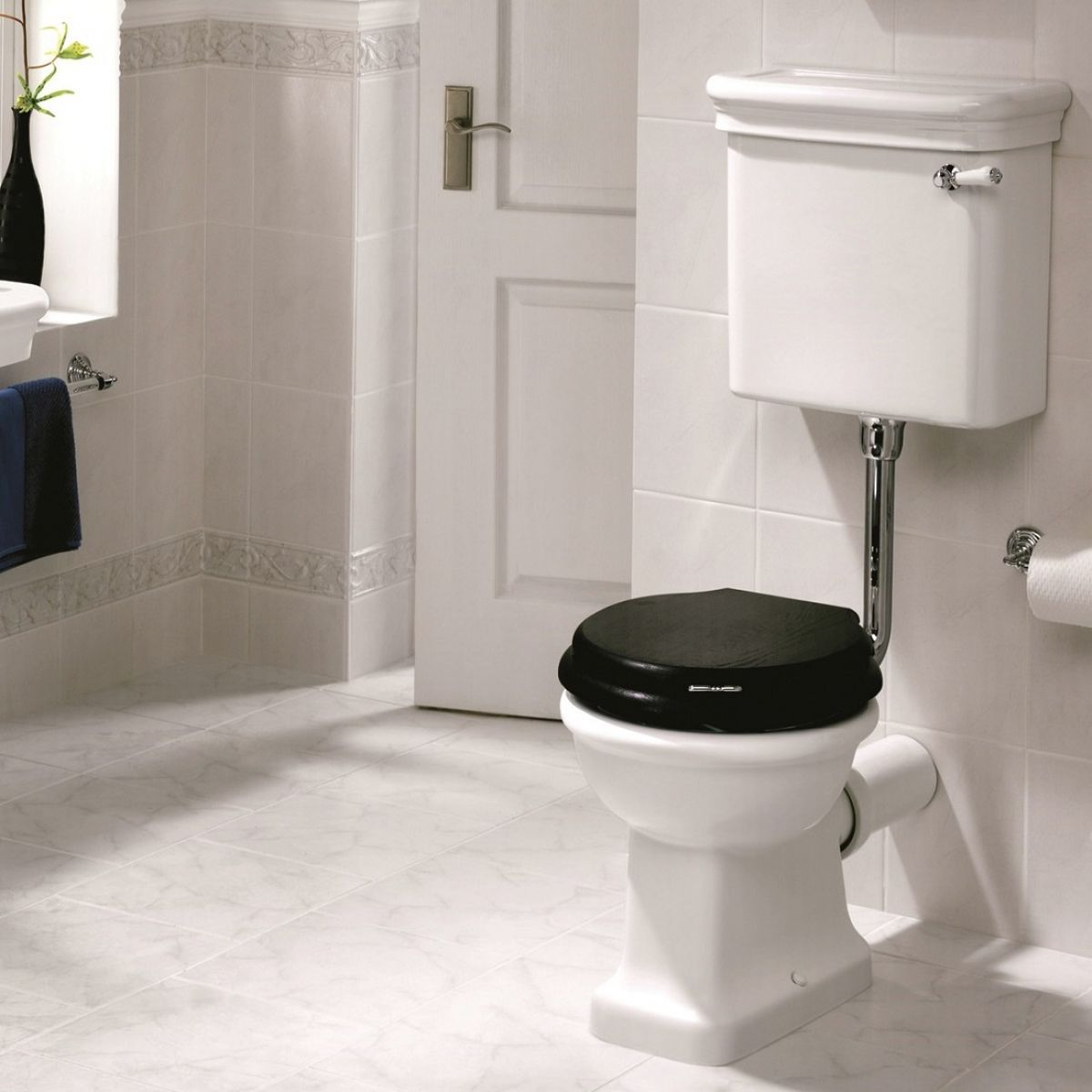 image example of a low level toilet