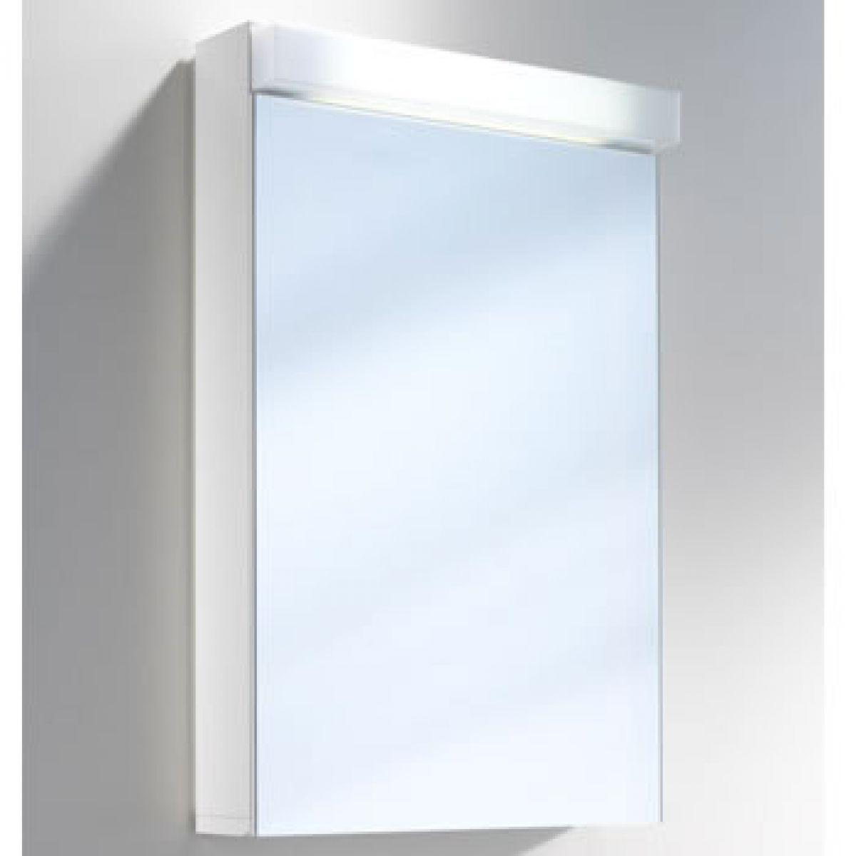 Schneider Lowline 1 Door Mirror Cabinet With Fluorescent Light