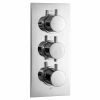 Phoenix Concealed Dual Outlet Thermostatic Shower Valve