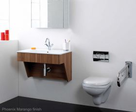 Phoenix Ambulant Easy Access Basin Unit with Matching Basin