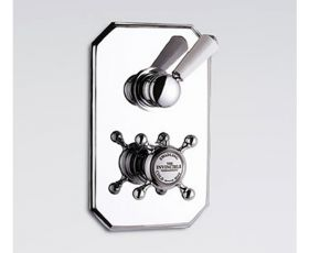 Swadling Invincible Concealed Single Outlet Thermostatic Shower Valve 2910