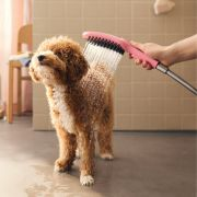Thumbnail Image For Dog Showers