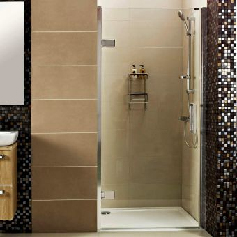 Roman Decem Hinged Shower Door