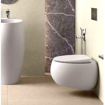RAK Cloud Wall Hung WC
