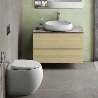 RAK Cloud Back to Wall Toilet Pan with Seat