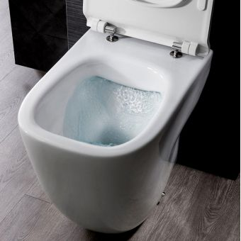 Bauhaus Wild Rimless Back To Wall Toilet