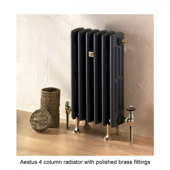 Aestus Rex 4 Column Radiator 670(h)mm