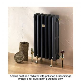 Aestus Rex 6 Column Radiator 490(h)mm