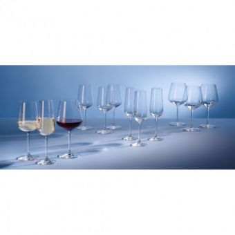 Villeroy & Boch Ovid 12 Pack Glass Set