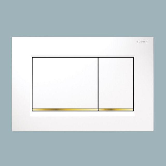 Geberit Sigma30 Dual Flush Plate - 115883JQ1