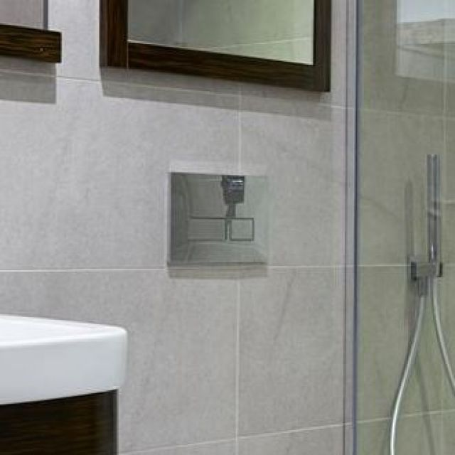 Abacus Trend 2 Toilet Flush Plates